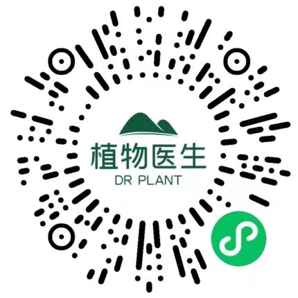 小程序 更多活动 植物医生